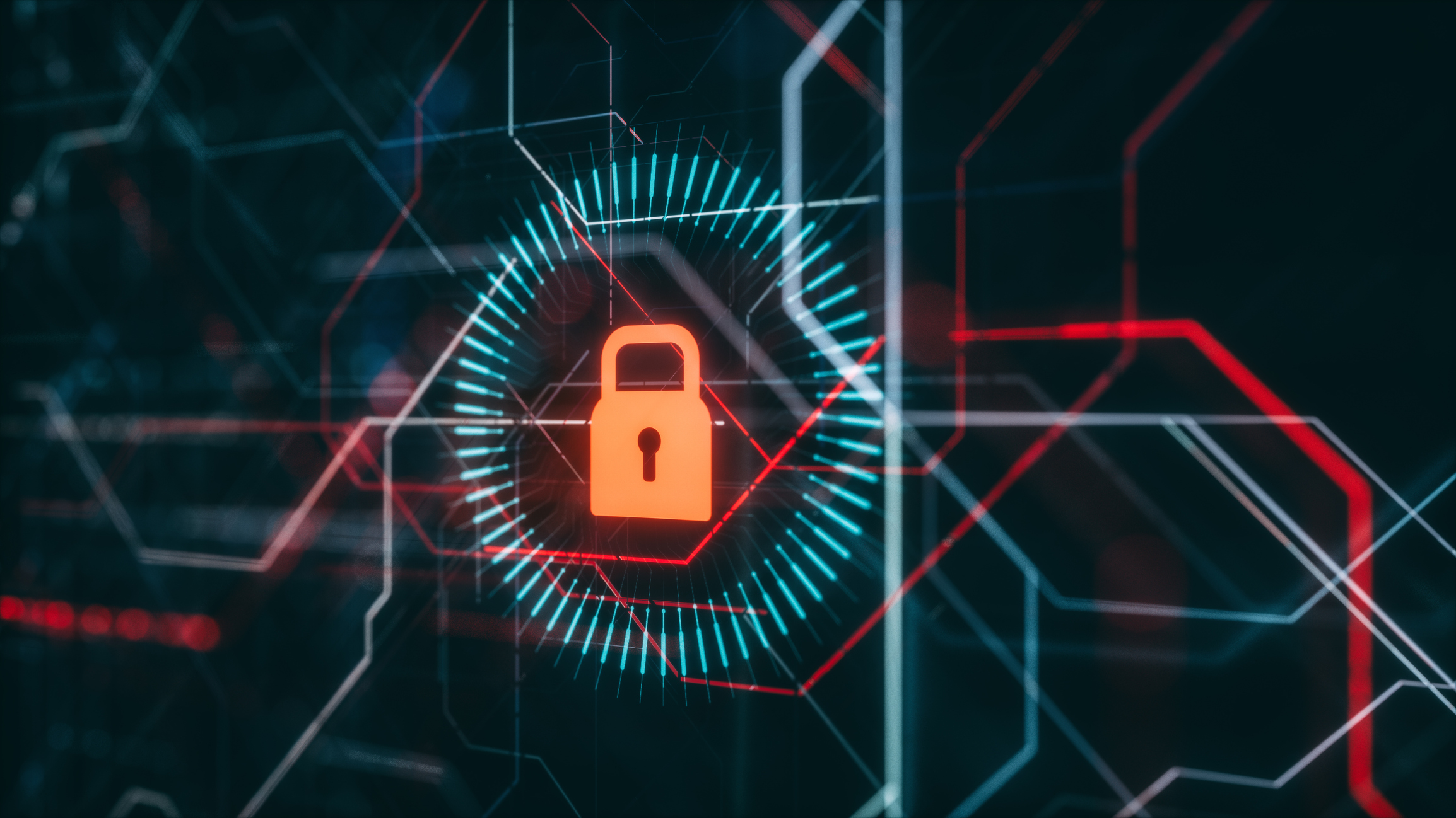 Cybersecurity in Custom Software: Protecting Your Data and Your Company