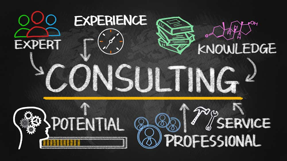 Strategic Software Consulting???
